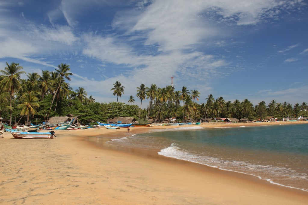 Arugam Bay Hotels